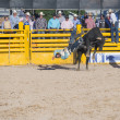 Helldorado days rodeo — Stock Photo #27901169