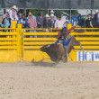 Helldorado days rodeo — Stock Photo #27959821