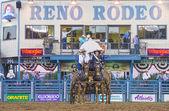 Reno Rodeo — Stock Photo