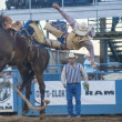 Reno Rodeo — Foto Stock #29247727