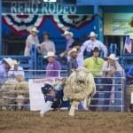 Постер, плакат: Reno Rodeo