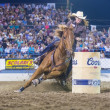 Reno Rodeo — Stock Photo #29247801