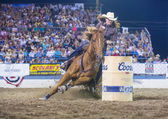 Reno rodeo — Stockfoto