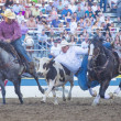 Stock Photo: Reno Rodeo