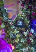 威尼斯狂欢节体验节 — 图库照片