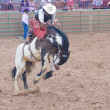 Gallup, Indian Rodeo — Stock Photo