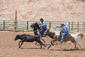 Gallup, rodeo indio — Foto de Stock