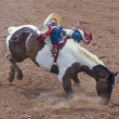 Gallup, Indian Rodeo — Stock Photo #31232431
