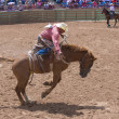 Gallup, Indian Rodeo — Stock Photo #31232471