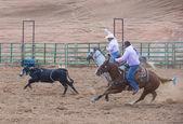 Gallup, indická rodeo — Stock fotografie