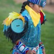 Native American — Stock Photo #31963289