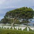 Cemetery in Point Loma San Diego — Stock Photo