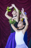 Ho'olaule'a Pacific Islands Festival — Stock Photo