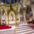 Stock Photo: St.Patrick's Cathedral