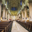 St.Patrick's Cathedral — Foto Stock