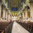 St.Patrick's Cathedral — Stock Photo