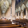 St.Patrick's Cathedral — Stockfoto