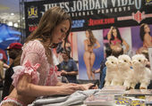 AVN Adult Entertainment Expo — Stock Photo