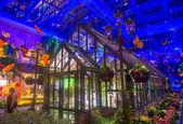 贝拉吉奥酒店温室与植物园 — 图库照片