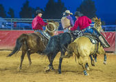 The Clark County Fair and Rodeo — Stock Photo