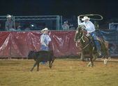 Clark County Fair and Rodeo — Stock Photo