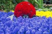 Bellagio Hotel konzervatoři & botanické zahrady — Stock fotografie