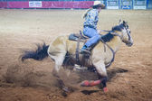 Reno Rodeo — Stock Photo