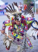 Paiute Tribe Pow Wow — Stockfoto