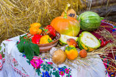 Autumn still life with vegetables and Ukrainian tablecloth — Stock Photo