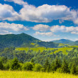 Mountains with green meadow — Stock Photo