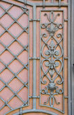 Design metal doors — Foto Stock