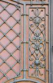 Design metal doors — Stock Photo
