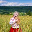 Stock Photo: Girl with bread in the wheat field