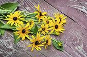 Amarelas flores silvestres em um fundo de madeira — Foto Stock