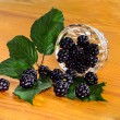 Fresh ripe blackberries — Stock Photo