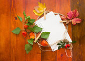 Autumn leaves with white paper for text — Stock Photo