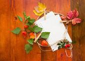 Las hojas de otoño con papel blanco para texto — Foto de Stock