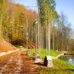 Autumn park landscape — Stock Photo #33807517