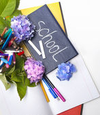 Flowers hydrangeas and school subjects. — Stock Photo