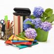 Stock Photo: Hydrangeflowers and school subjects