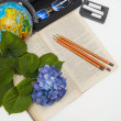 Foto Stock: Flower hydrangeand school subjects.