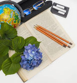 Flower hydrangea and school subjects. — ストック写真
