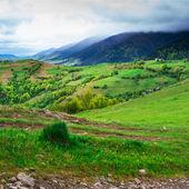 Mountain slopes with green meadow — Foto de Stock