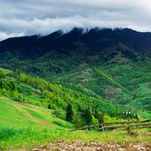 Prado verde en las montañas con valla — Foto de Stock