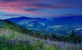 Sunset on the mountain top — Foto Stock