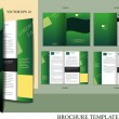 Brochure design template — Stock Vector #14941359