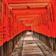 Fushimi Inari — Stock Photo #12637702