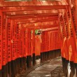 Fushimi Inari — Stock Photo #12637709