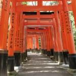 Fushimi Inari — Stock Photo #12637721