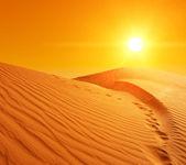 Sand dunes in Sahara — Stock Photo